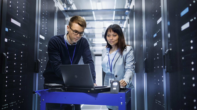 data scientists working